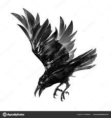 скачать рисунок дайвинг ворона изолированные эскиз птиц в полете