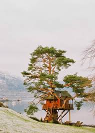 12 FAIRYTALE TREEHOUSES FROM AROUND THE WORLD  Flying The NestTreehouse Scotland