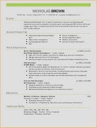 Resume Website Examples Inspirational Sales Resume Examples Awesome