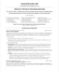 It Project Manager Free Resume Samples Blue Sky Resumes Intended For ...