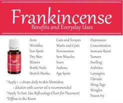 Young Living Oil Usage Chart Frankincense Essential Oil 15ml Young Living Therapeutic Grade New Full Size Aromatherapy Homeopathic
