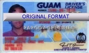 Make - Programsjazz Driver License Id