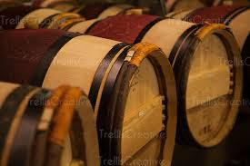 oak wine barrels. traditional french oak wine barrels in a winery cellar