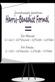 Grundumsatz, rechner / Kalorienbedarf berechnen