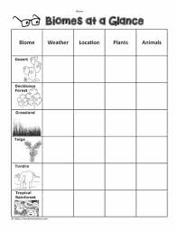 At A Glance Organizer Biome Graphic Organizer Worksheets