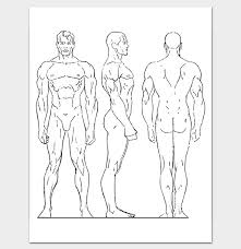 Body Outline Front And Back 11 Printable Worksheet