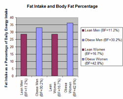 Carbohydrates Fats And Proteins