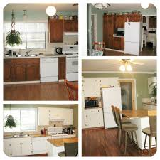 Delighful Painting Oak Kitchen Cabinets White Before Intended Design Ideas