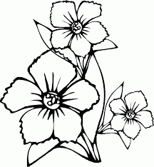 Small Picture adult spring flowers coloring pages preschool spring flowers