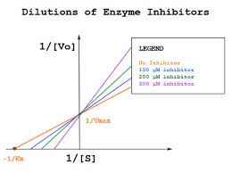 Enzyme Chart Enzyme Assays Chemistry Libretexts