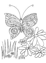 Kleurplaat Vlinder Met Verschillende Bloemen Kleurplaatjecom