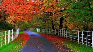 beautiful nature wallpaper download. Simple Download New Beautiful Nature Wallpaper Download For Mobile Gallery  HD  For U