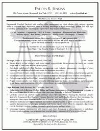 Best It Resume Format Inspiration Lawyer Resume Template Jospar Lawyer Resume Format Best Resume And
