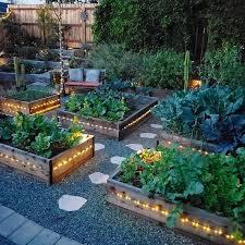backyard garden layout