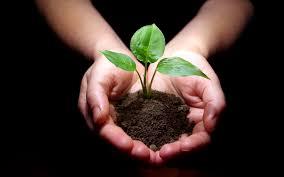 Защита окружающей среды Охрана