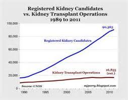 organ transplant essays edu essay