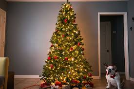 the best artificial tree