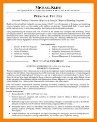 Example Of A Personal Profile On A Resume Examples Of Profiles For Resumes Ceo pay research paper Homework 30