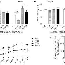 Pilocarpine Induced Epilepsy In Mice Impairs Fear Memory