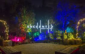 enchanted forest of light is an interactive nighttime experience unlike anything else in southern california featuring a one mile walk through 10
