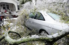If a tree falls on your home or vehicle, who pays? | Business ...