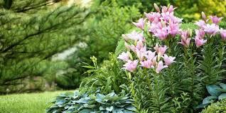 garden landscaping ideas. Flower Garden Landscaping Ideas A