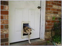 patio dog door bunnings hartman pacific 385 x 270mm pet door for dog flap door bunnings
