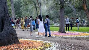jpl to land at descanso gardens for after hours fun