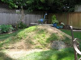 Berm Garden Designs What Is A Berm Learn About Berm Uses In Landscapes