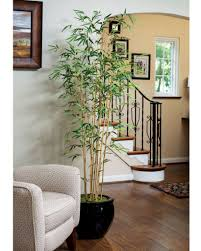 Palm Tree Decor For Living Room An Artificial Tree Will Brighten Your Home Daccor With Natural