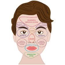 Facial Diagnosis Chart Denny Waxman Macrobiotic Counselor