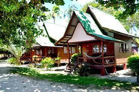 Khao Sok Tree House Resort  Links To Other Accomodation In Khao Treehouse Koh Phangan