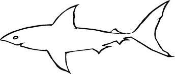 Printable Shark Outline Great White Shark Outline Coloring