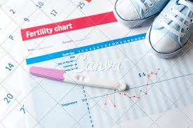 Baby Shoe Chart Pregnancy Test And Baby Shoes On Fertility Chart Photos By