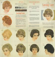90 Clairol Professional Hair Color Chart