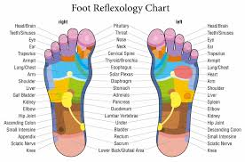Free Reflexology Charts Points For Specific Ailments
