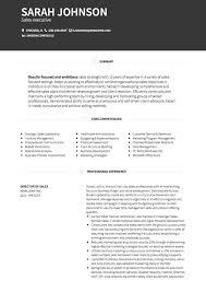 Professional Sales Resume Sales Cv Examples Templates Visualcv