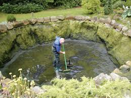 how to clean a koi pond. Simple Koi Pond Cleanout Proceedure And How To Clean A Koi