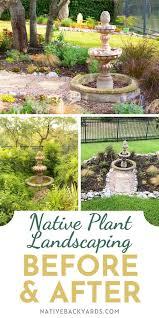 my backyard native landscape design