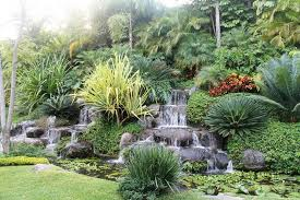 Small Picture tropical garden design nz Margarite gardens