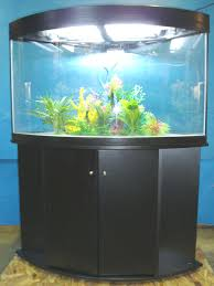 fish tank lighting ideas. Modern Futuristic Design Of The Corner Aquarium Fish Tanks That Has Wooden Floor Can Be Decor With Lighting Add Beauty Inside House Tank Ideas