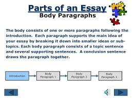 body image essays co parts of an essay