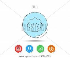 Seashell Chart Sea Shell Icon Vector Photo Free Trial Bigstock
