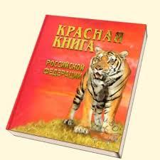 Международная красная книга животные Декабря blog  Скачать реферат на тему Красная книга Закон об особо охраняемых