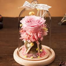 image for preserved rose in glass dome