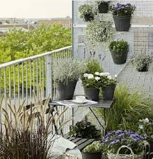 lack of space in a balcony garden is the main problem and you need to deal with it smartly you can double up the planting space if you grow things