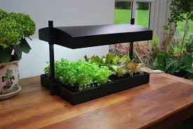 Indoor Kitchen Garden Grow Light Garden
