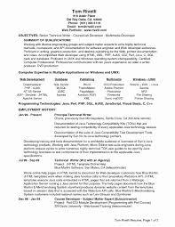 Senior Software Engineer Resume Template Software Programmer Resume Sample Elegant Senior Software Engineer 19