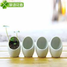 2018 Desktop Flower Pot Eggshell Shape Small Plants Flower Pot White  Ceramic Pots Flower Planter Home Decoration Garden Ornaments From  Garden1002, ...