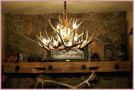 deer antler chandelier australia deer horn chandelier lighting